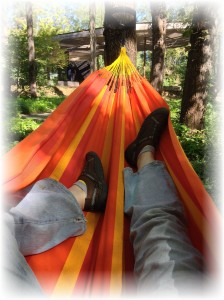 lying in a hammock in the woods