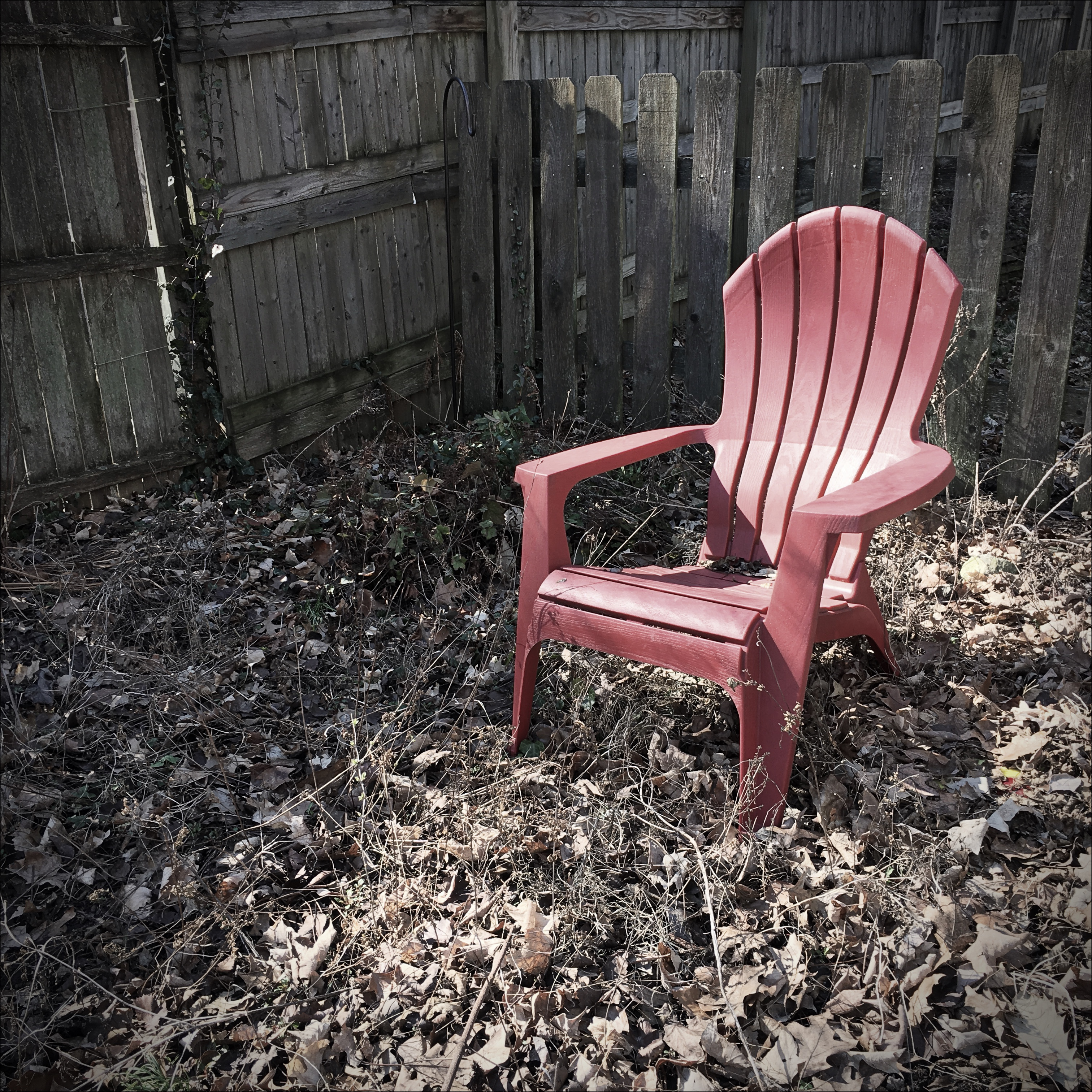 Red chair photography - Red Chair Photography 58